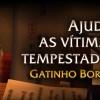 Gatinho Borralheiro disponível na Blizzard Store!