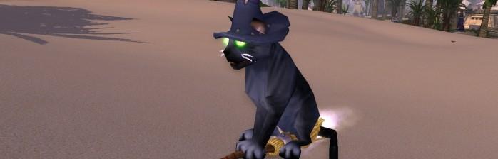 [Mascotes] Louco por gatos!