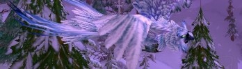 CORRAM: Últimos dias de Coruja da Neve e Lula Invernal!