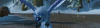 Mascote do mês – Coruja da Neve