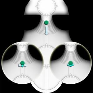 iccsinicytomb