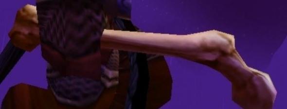 large bear bone