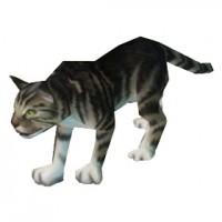 Gato Tigrado Preto