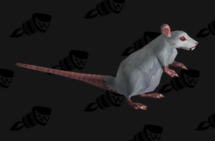 Blind Rat