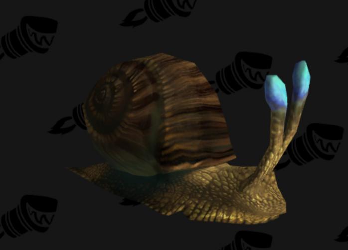 Mudshell Conch