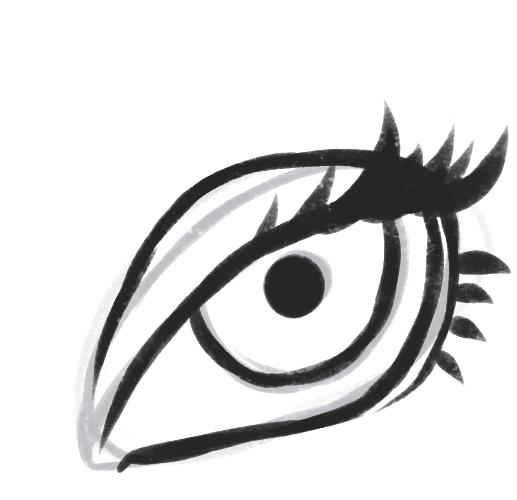 olho13